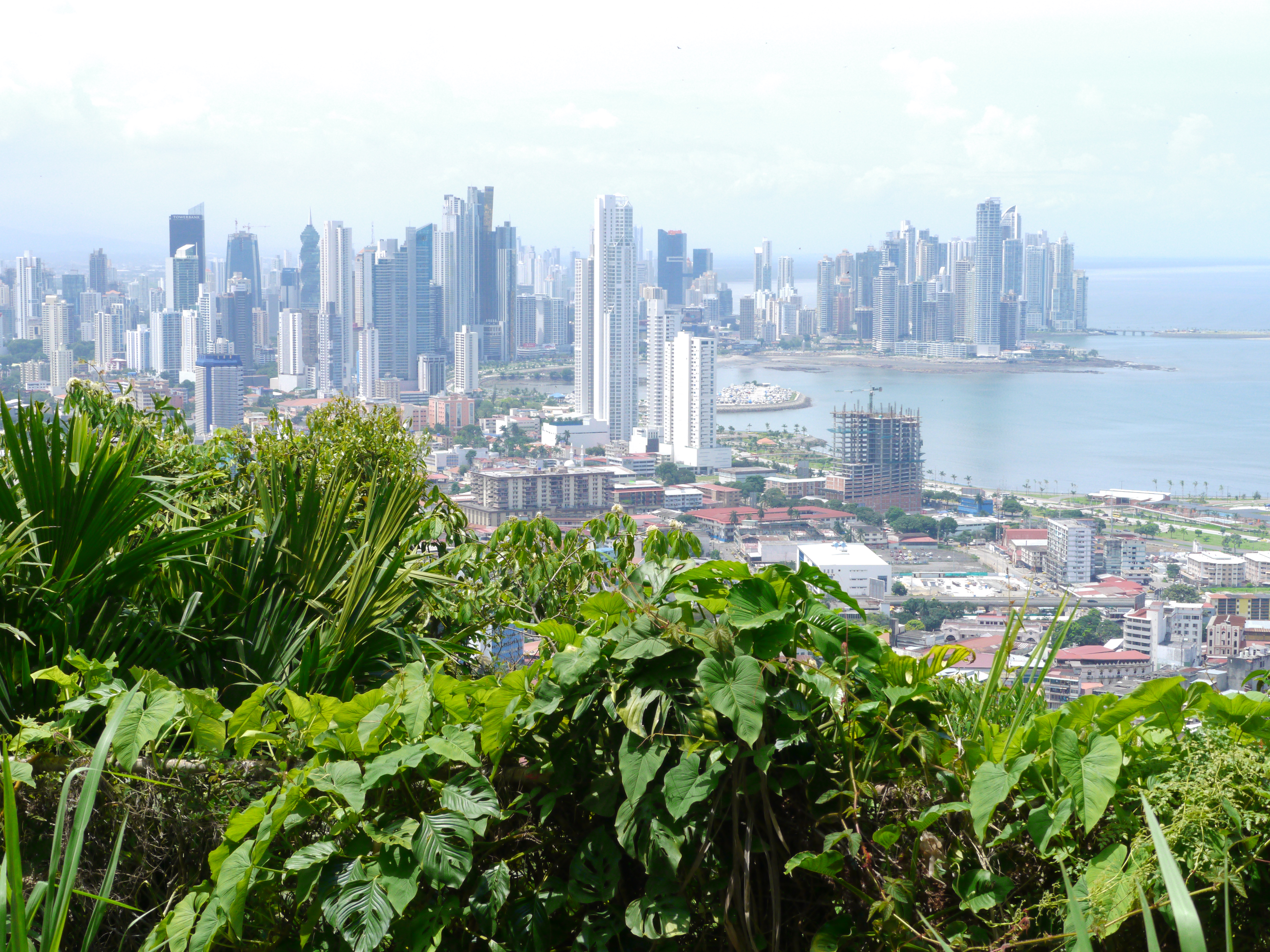 Panama: How to take the bus in Panama City if you don\'t speak ...