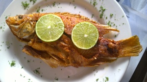Mojarra, by Mary Luz Mejia